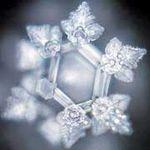 水の素顔はきれいな結晶