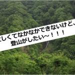 山に登りたい~!
